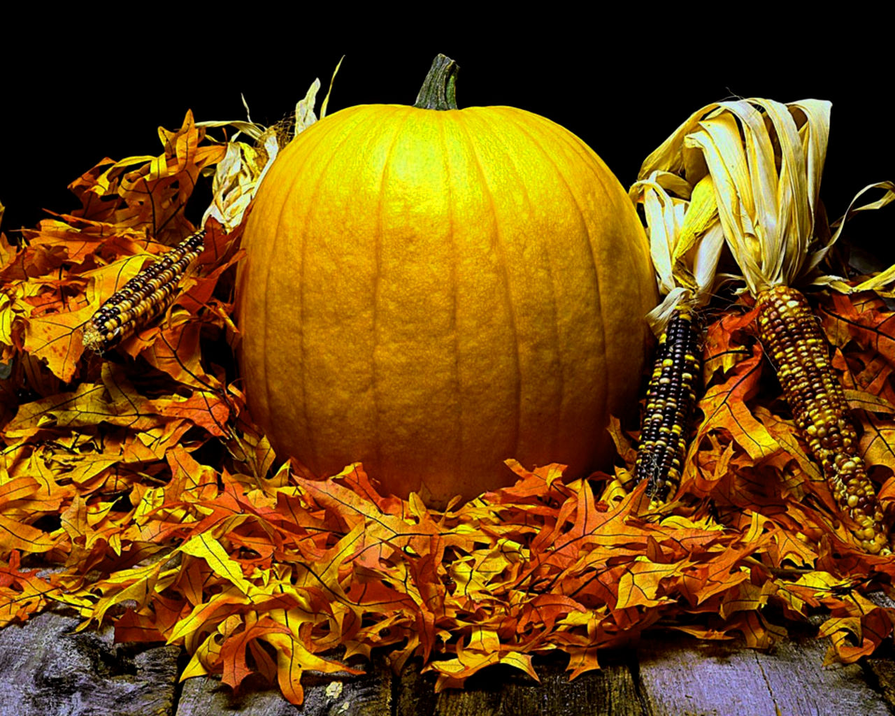 Fall Leaves And Pumpkins Wallpaper   tianyihengfeng Free Download