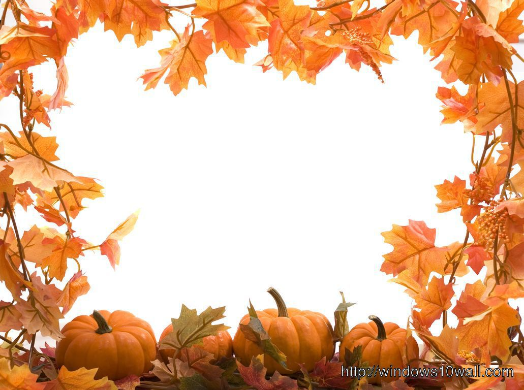 Fall Leaves And Pumpkins Wallpaper