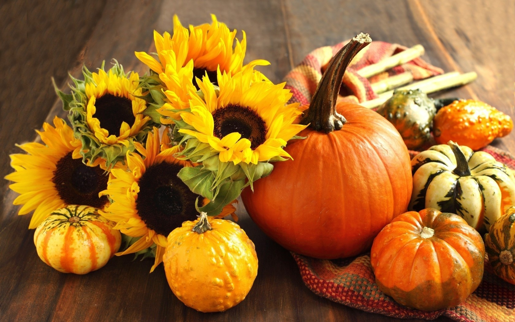 Fall Pumpkin Wallpaper and Screensavers - WallpaperSafari
