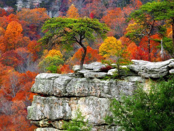 Fall Mountains Desktop Background Hd Widescreen 11 HD Wallpapers