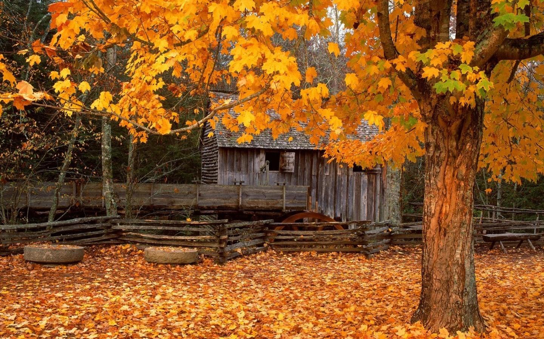Fall Mountain Desktop Wallpaper - WallpaperSafari