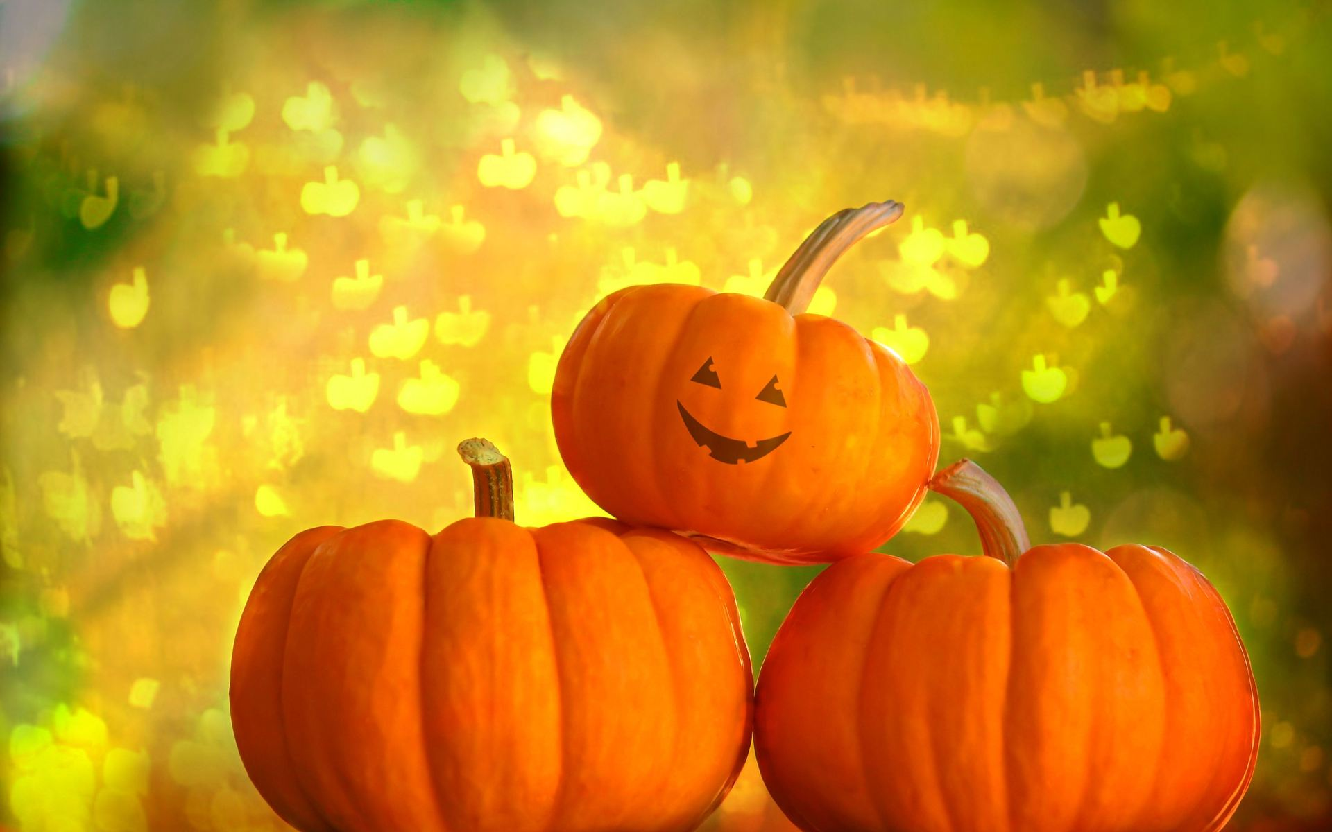 Fall Pumpkins Wallpaper