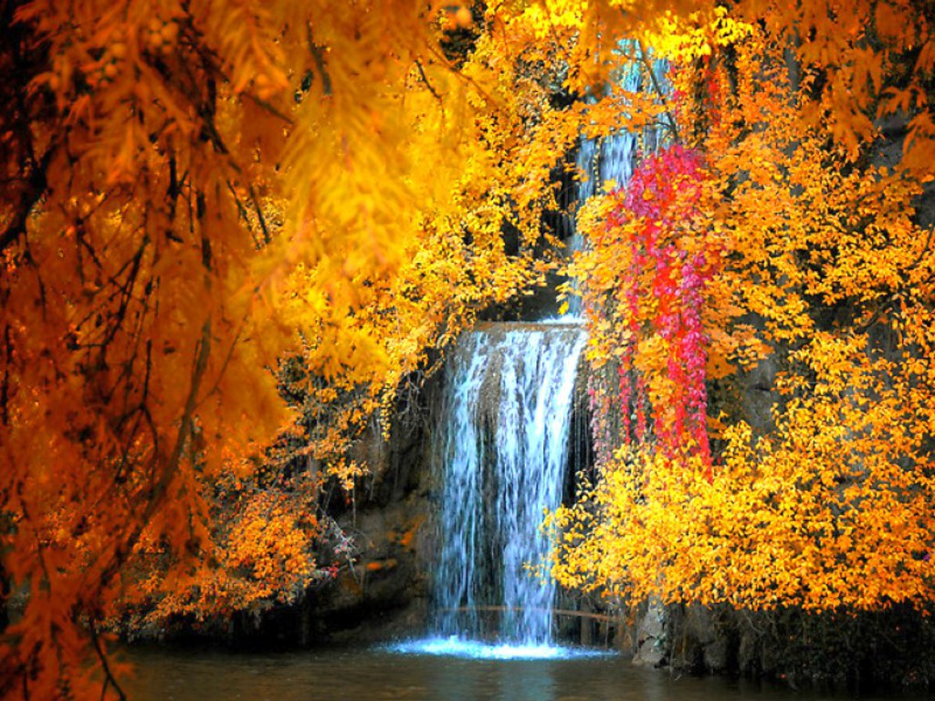 Free Fall Screensavers and Wallpaper |     Free Waterfall in