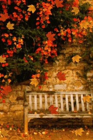 67 autumn wallpaper for android Pictures