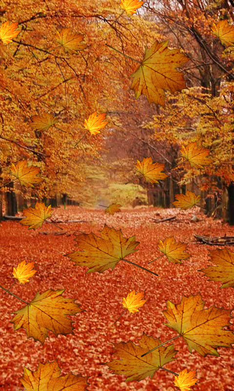 Fall Live Wallpaper - Android Apps on Google Play