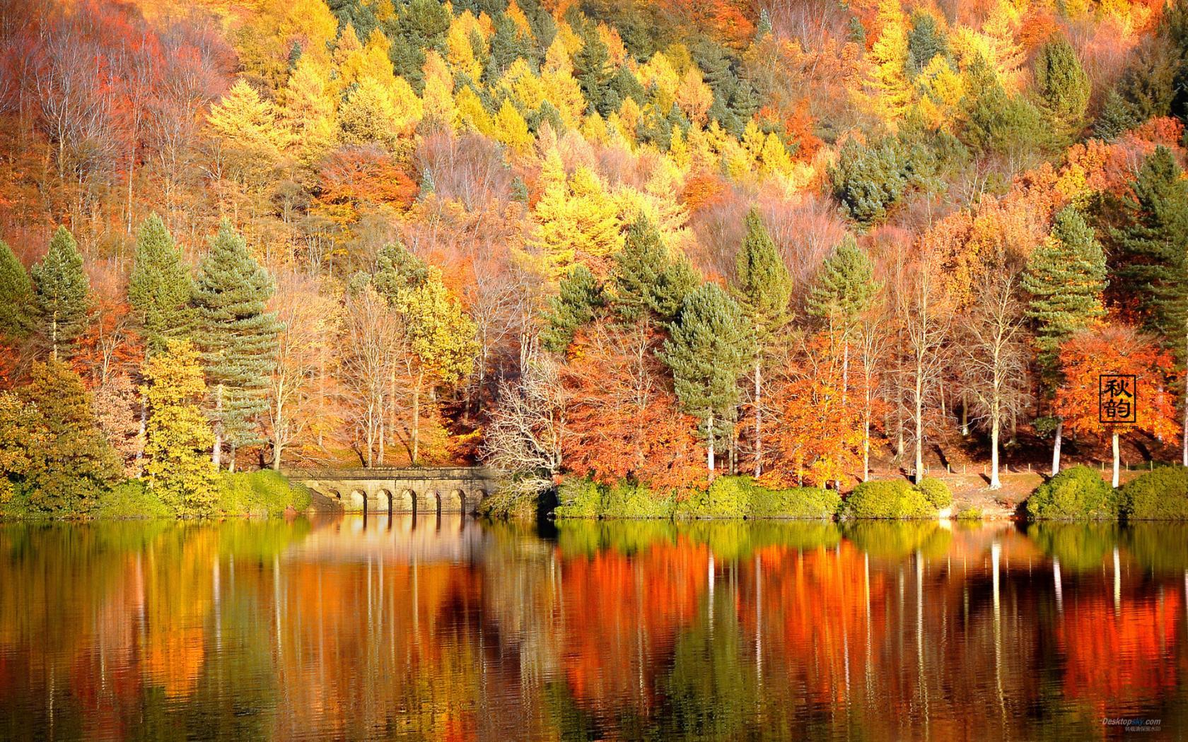 Fall Wallpaper Widescreen