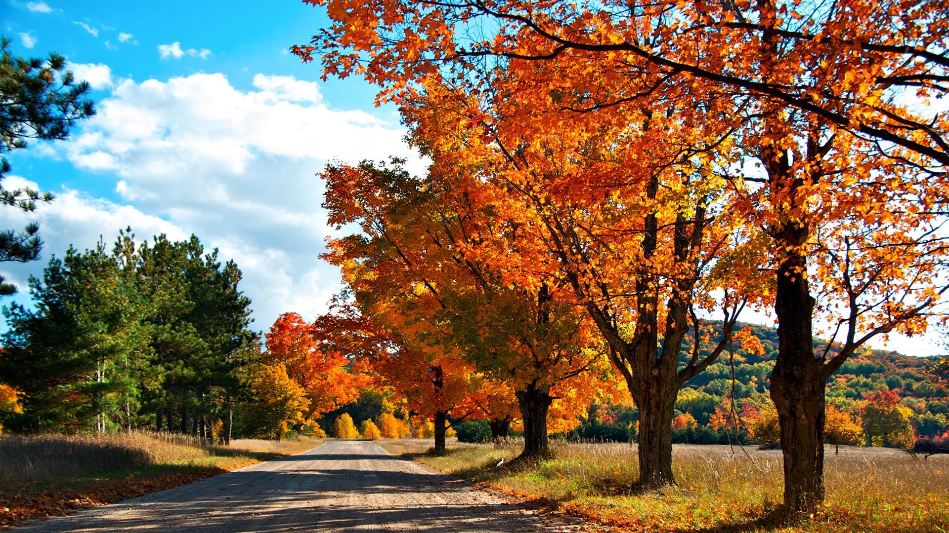 HD Autumn - HDWPlan