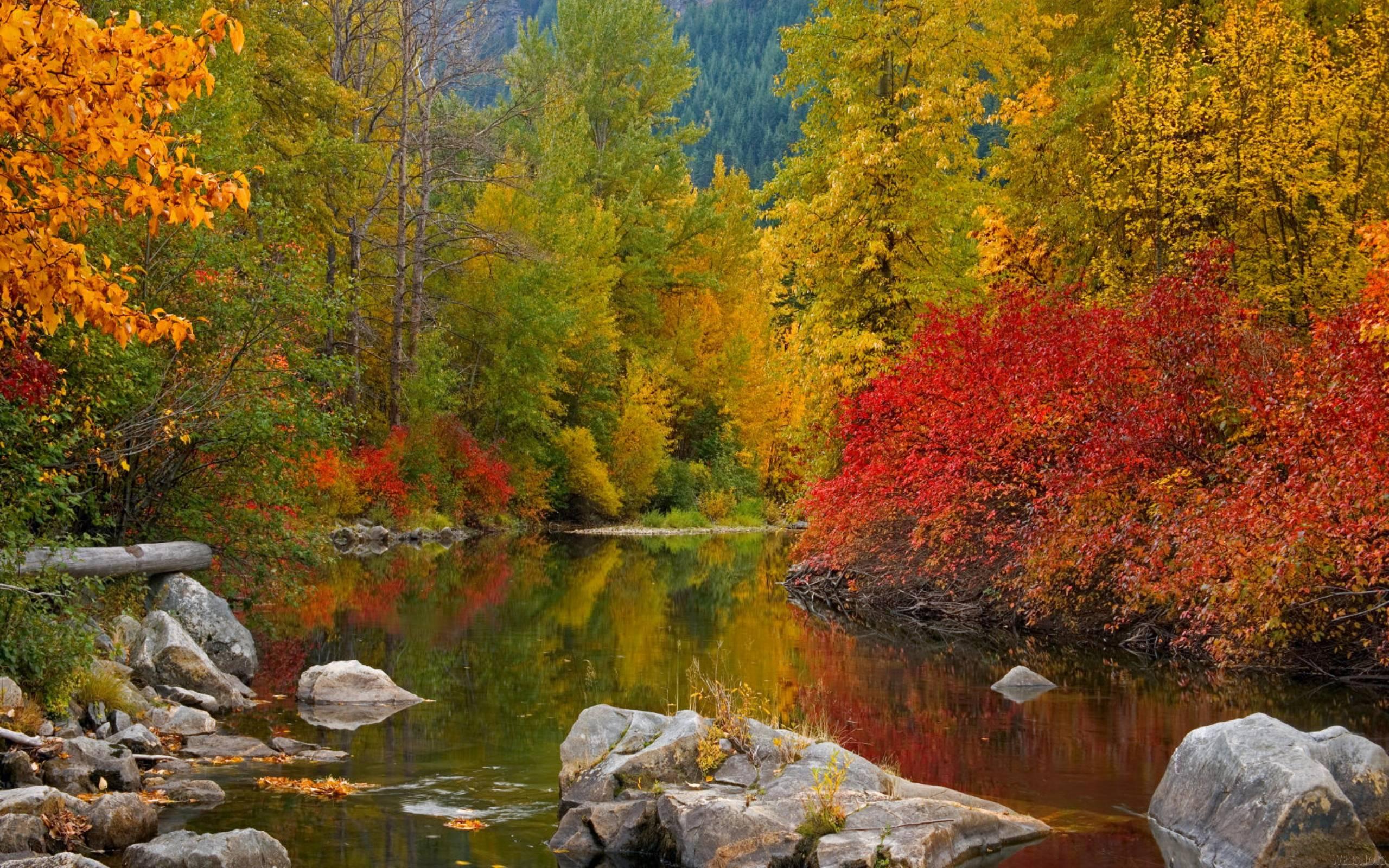 Collection of Fall Desktop Wallpaper Widescreen on HDWallpapers
