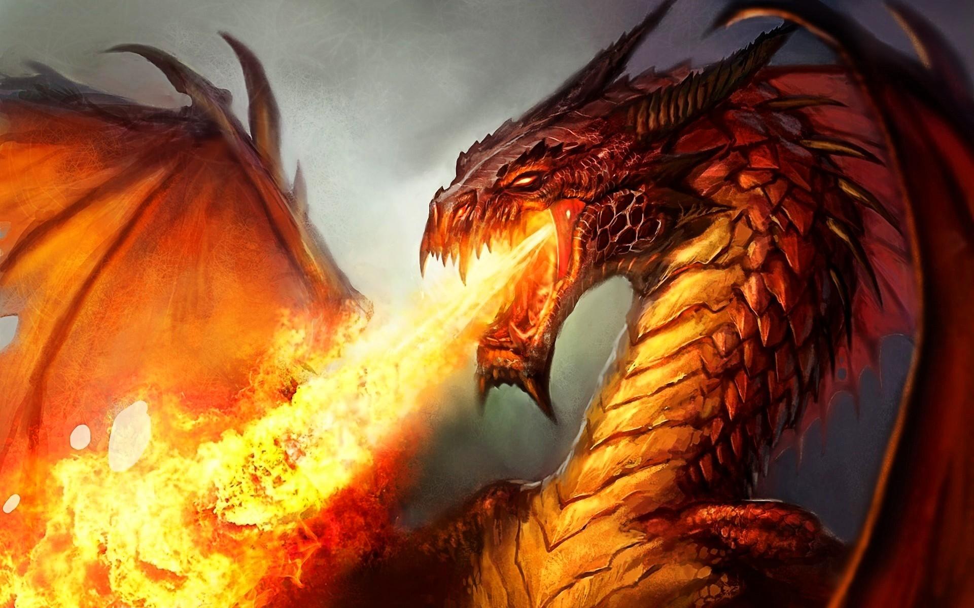Fire Dragon HD Wallpapers 06099 - Baltana