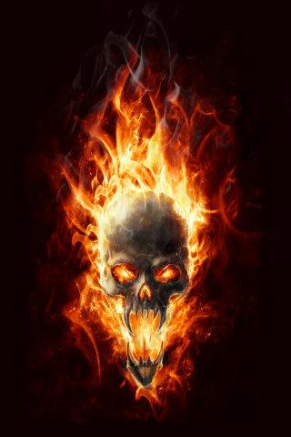 Collection of Fire Skull Wallpapers on HDWallpapers