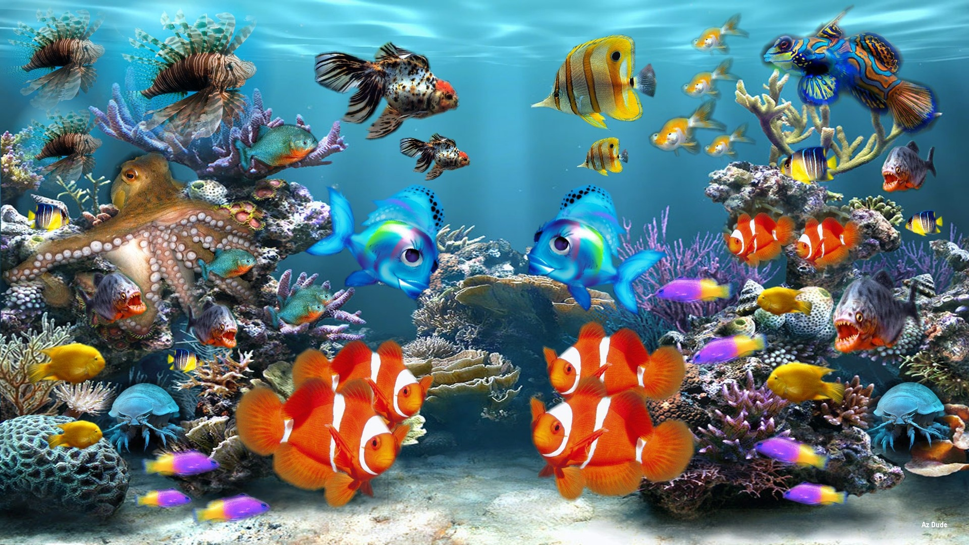 Beautiful Fish HD Wallpapers Free Download