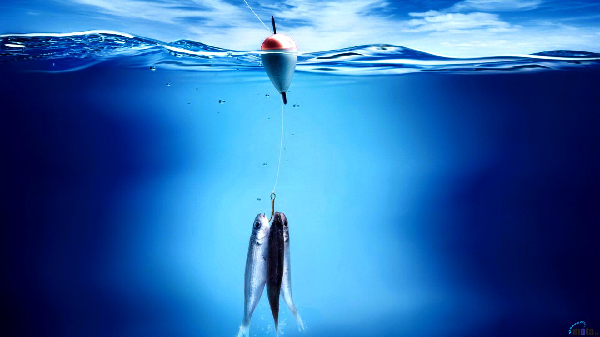 Fishing Desktop Wallpaper