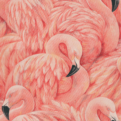 Flamingos by Albany - Pink : Wallpaper Direct