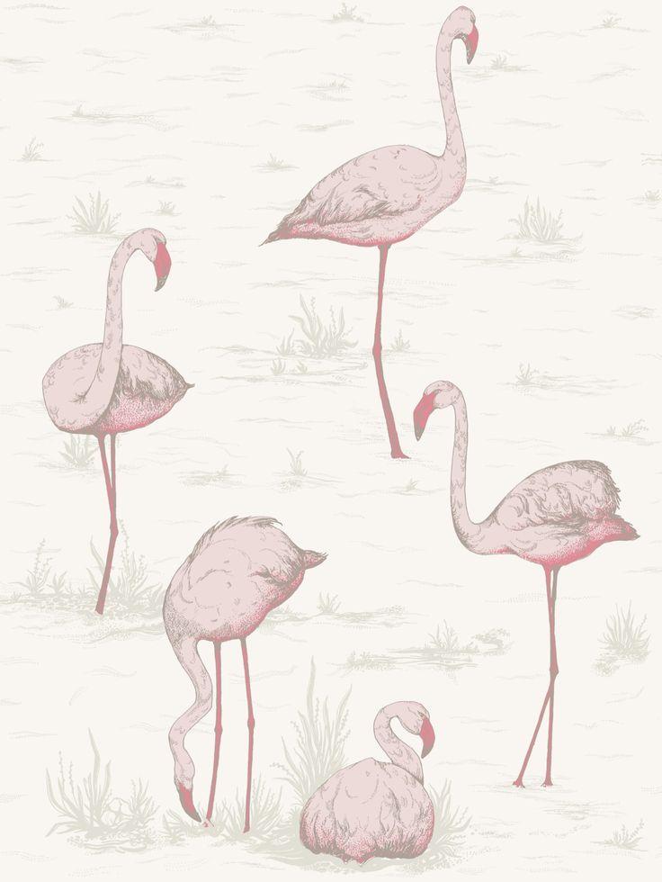 78+ ideas about Flamingo Wallpaper on Pinterest | Flamingo