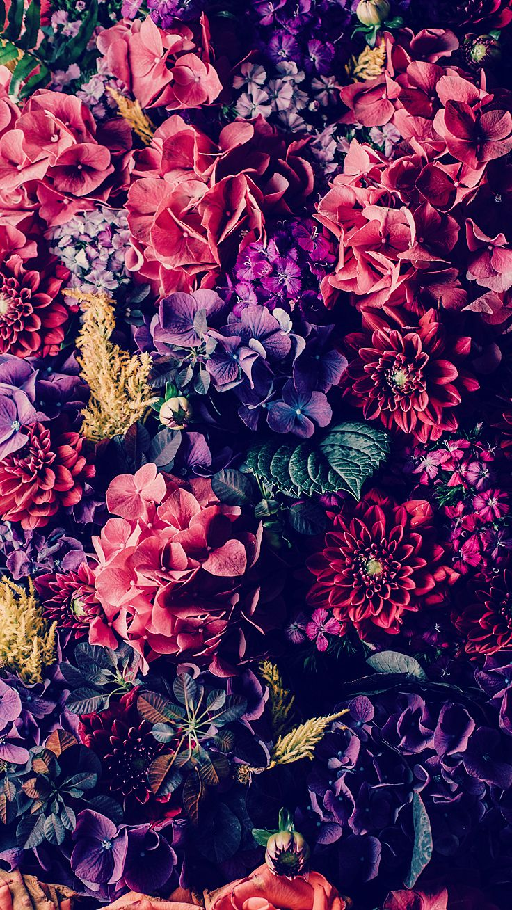 1000+ ideas about Floral Wallpaper Iphone on Pinterest | Flower