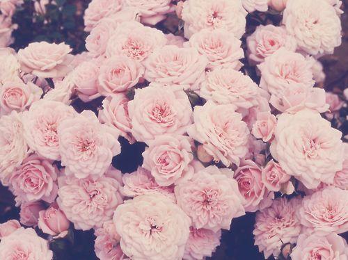 Indie Vintage Floral Background | Flower Background tumblr