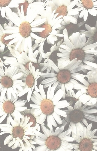 33 units of Flower Wallpaper Tumblr