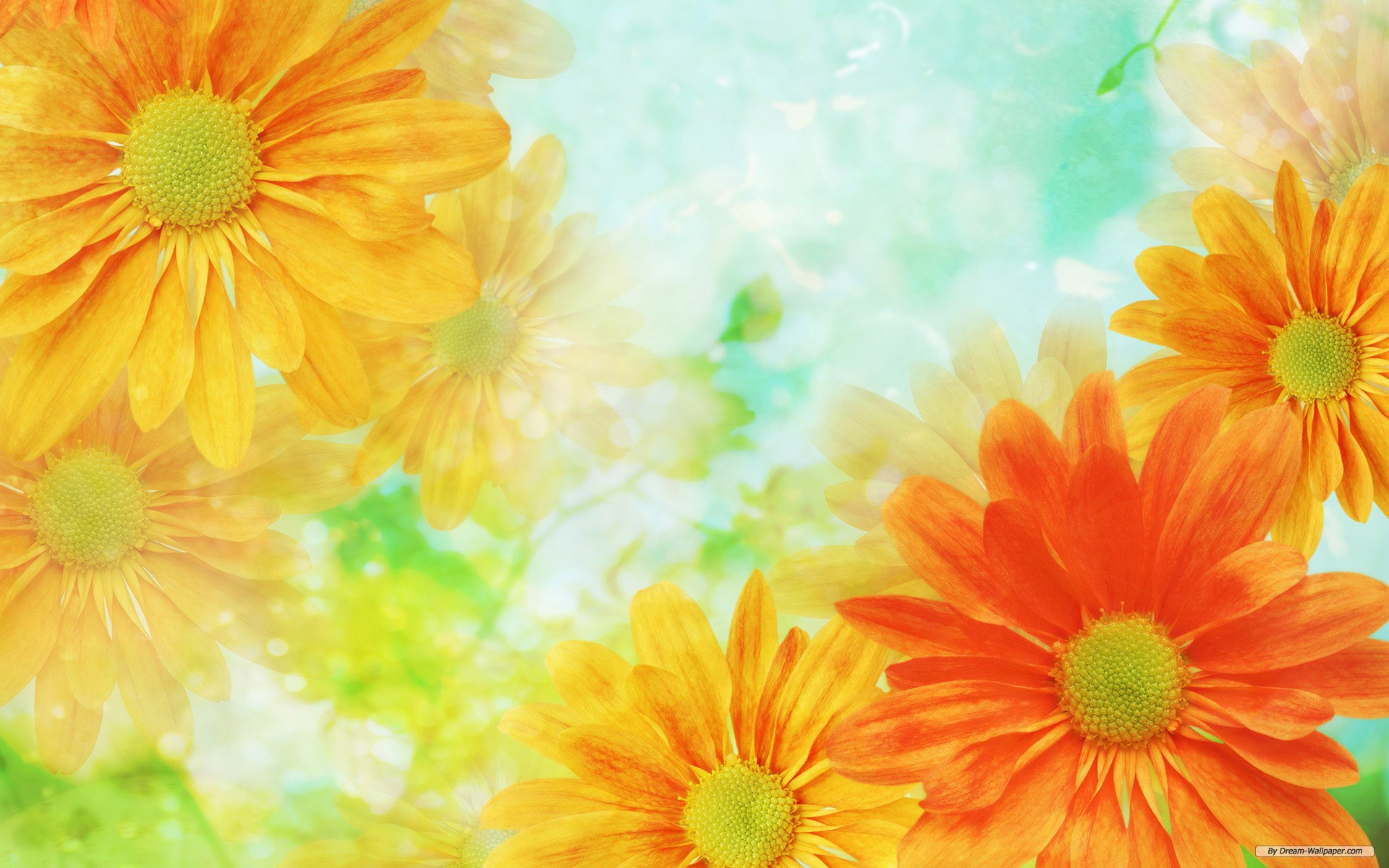 Flower Background Wallpaper