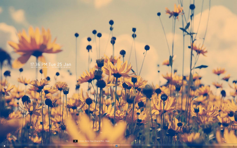 Flower Tumblr wallpaper | 1920x1200 | #42458
