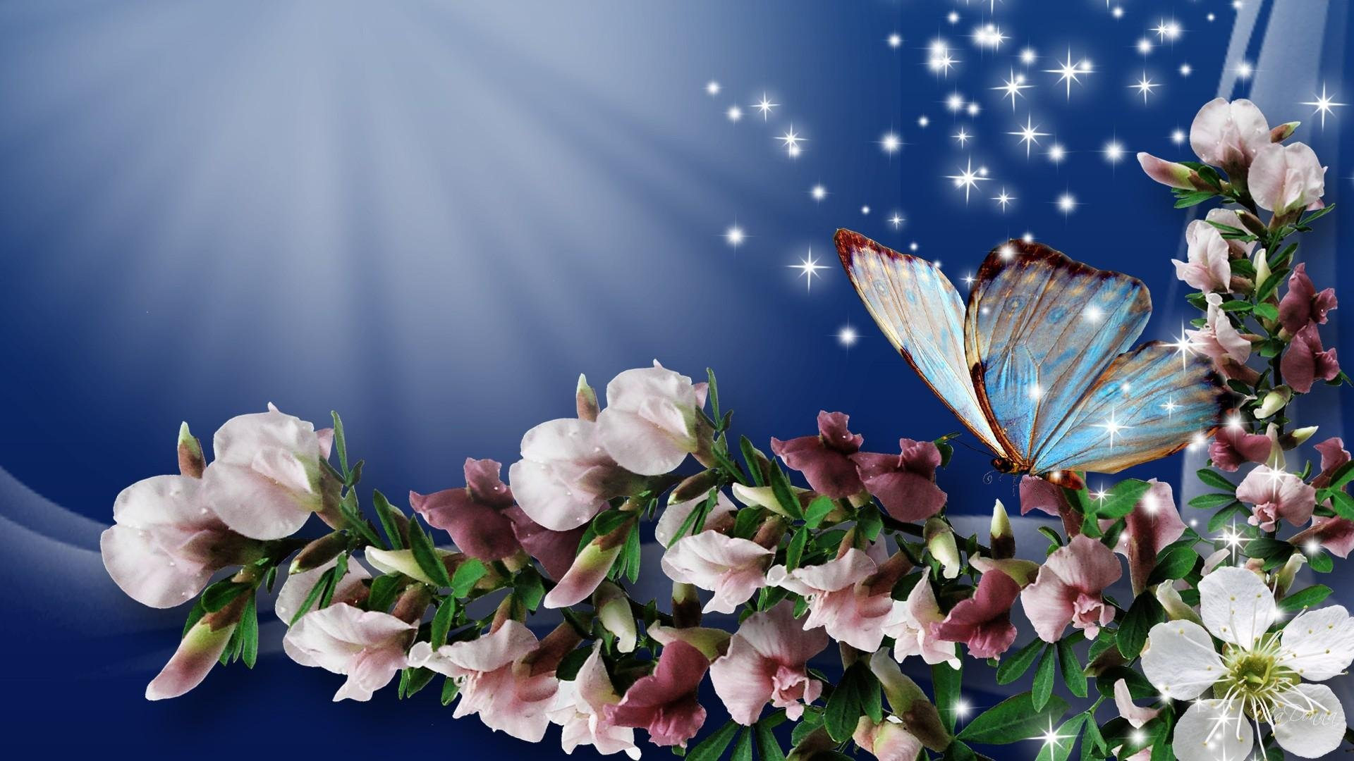 Flowers And Butterflies Spring Wallpapers
