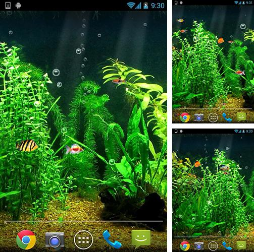 Android Aquariums live wallpapers - free download!