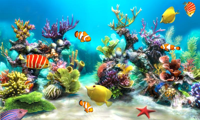 Sim Aquarium Live Wallpaper - Android Apps on Google Play