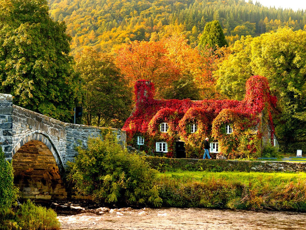 Free Autumn Desktop Wallpapers Backgrounds