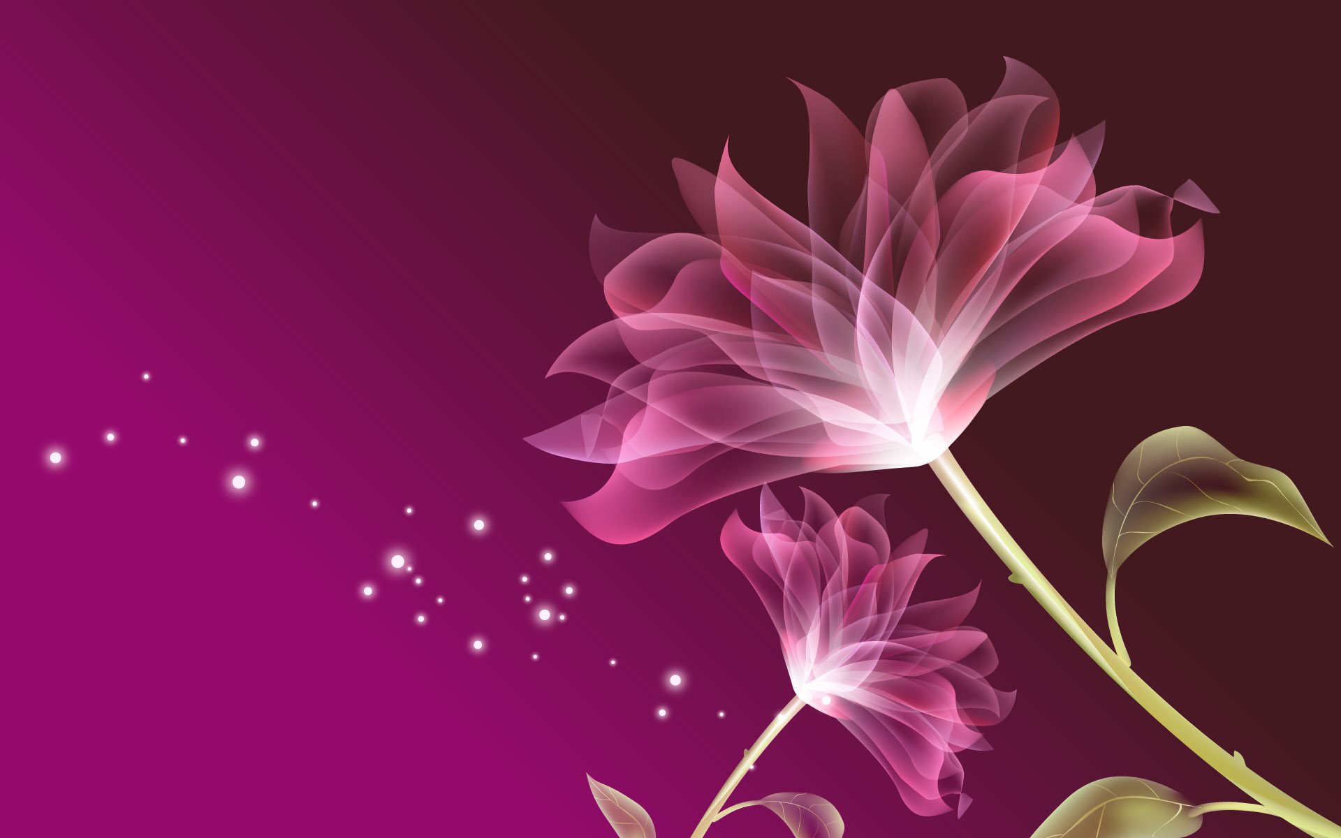 Flowers Wallpapers, FHDQ Wallpaper