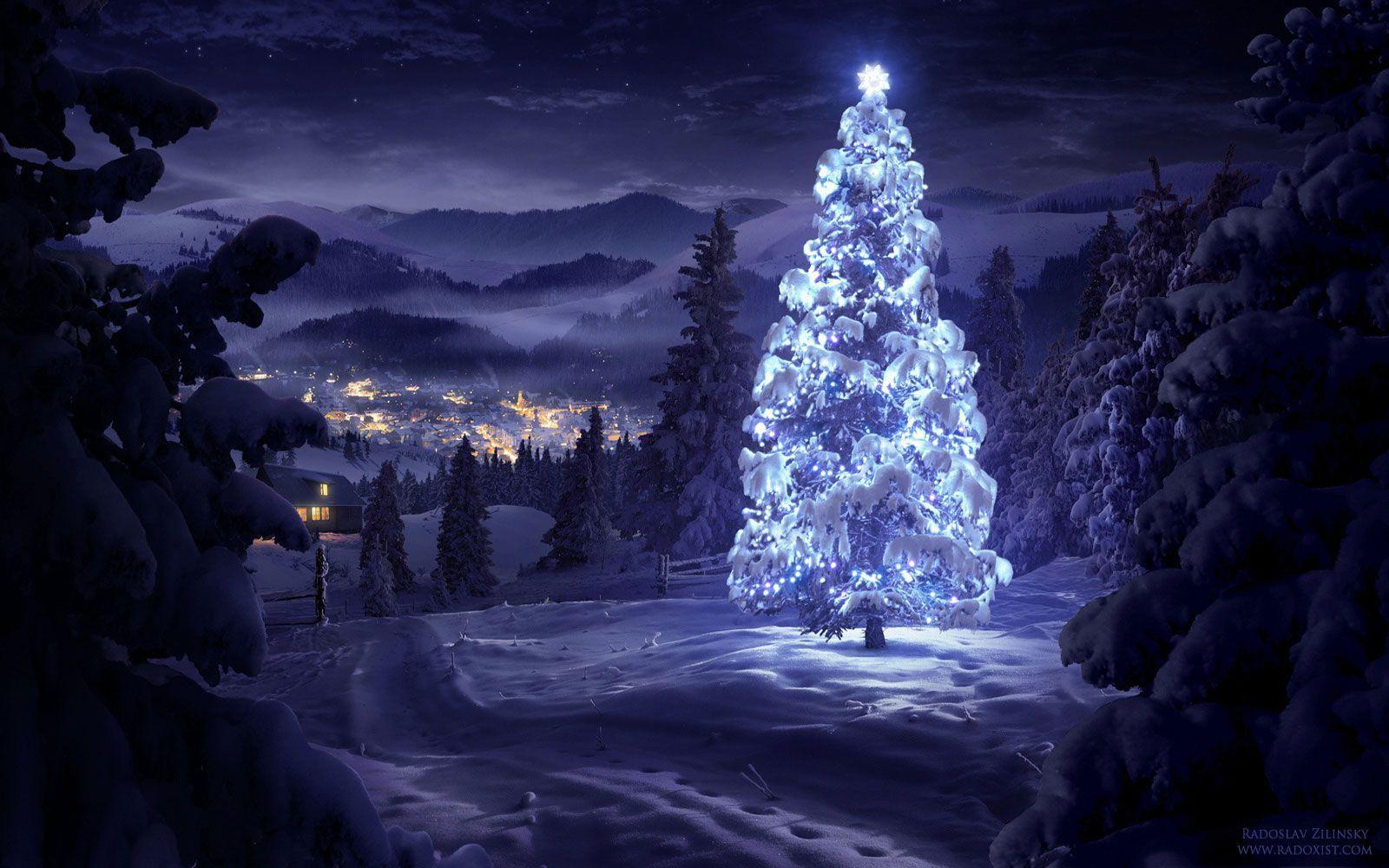free christmas tree wallpapers - sf wallpaper