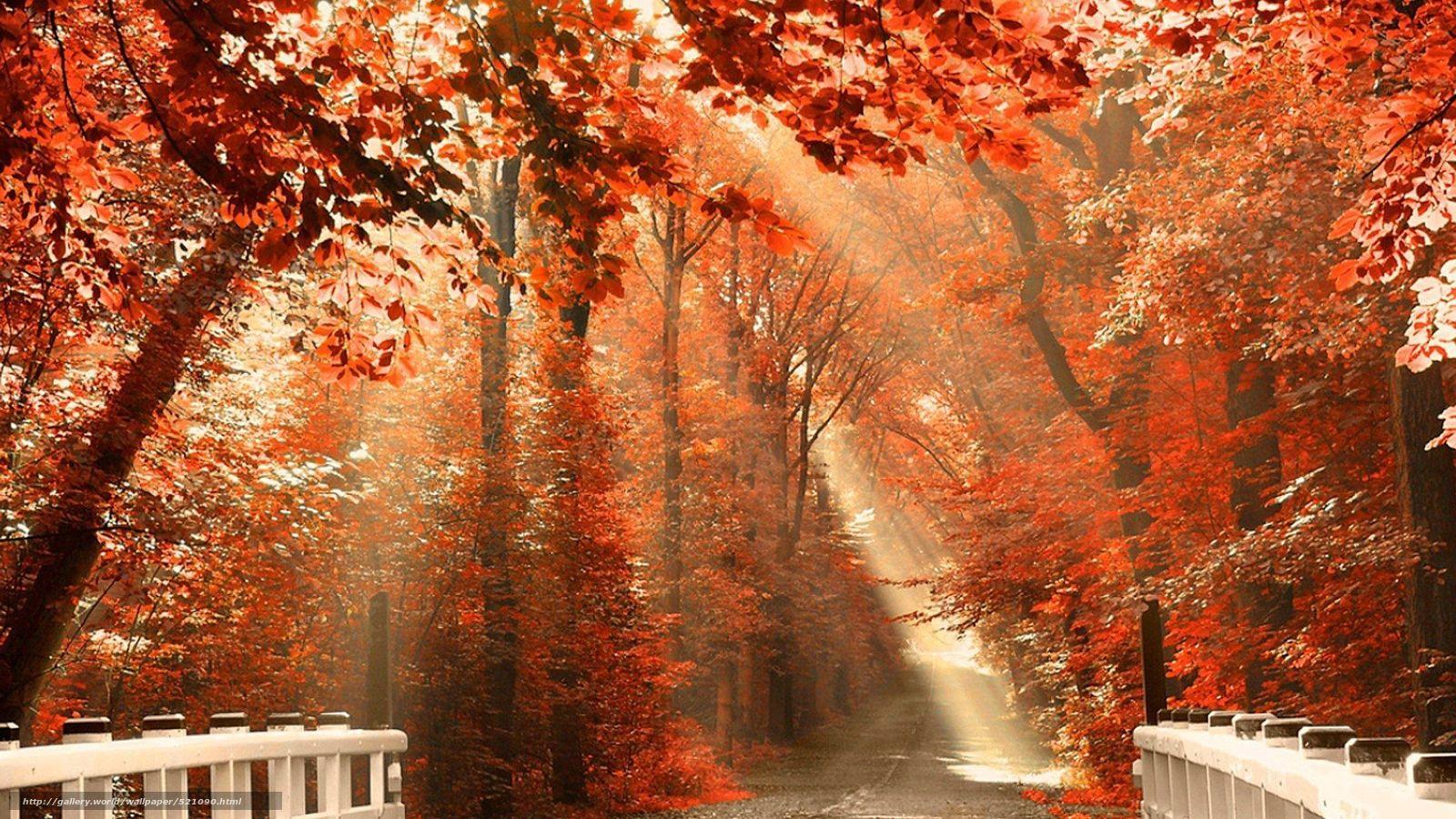 ADM979 HQ Definition Free Desktop Wallpaper Autumn Scenery, Autumn