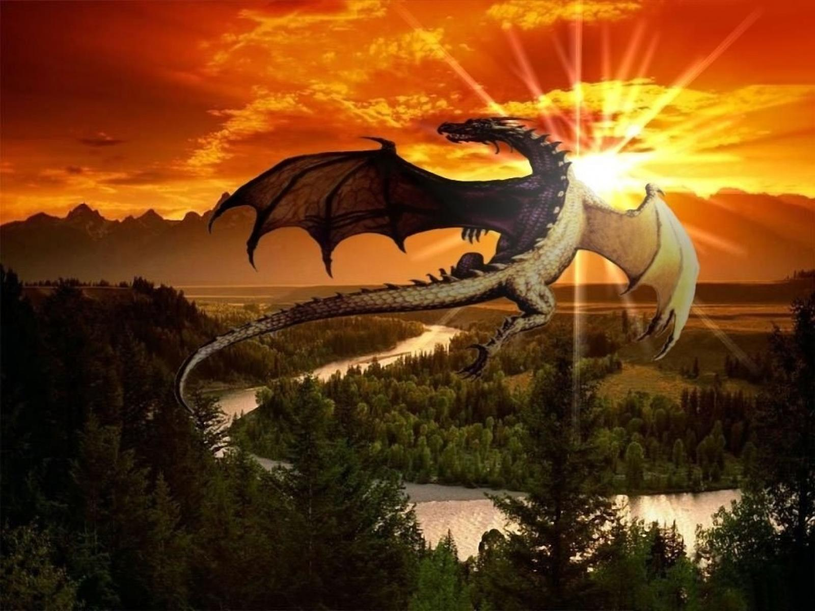 Cool Wallpaper Mountain Dragon - free-dragon-wallpaper-downloads-13  HD_727755.jpg