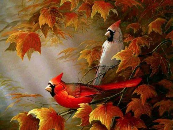 Fall Screensavers   The Free Autumn Cardinals Wallpaper - Download