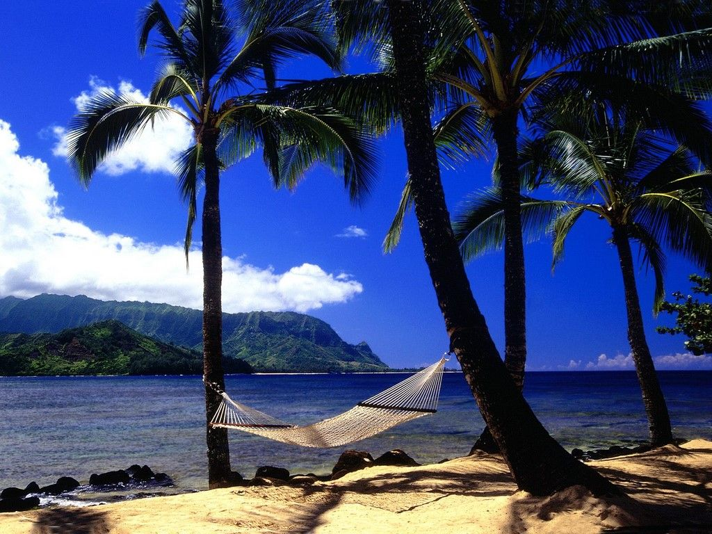 Free Hawaii Screensavers Wallpaper, Interesting Hawaii HDQ Images