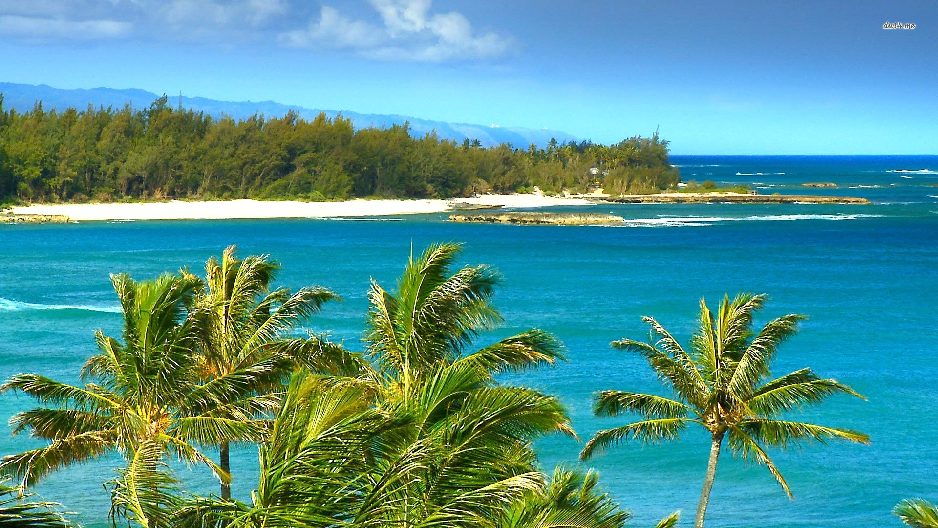 Hawaii Wallpapers, Live Hawaii Wallpapers, NJR51 Hawaii Backgrounds