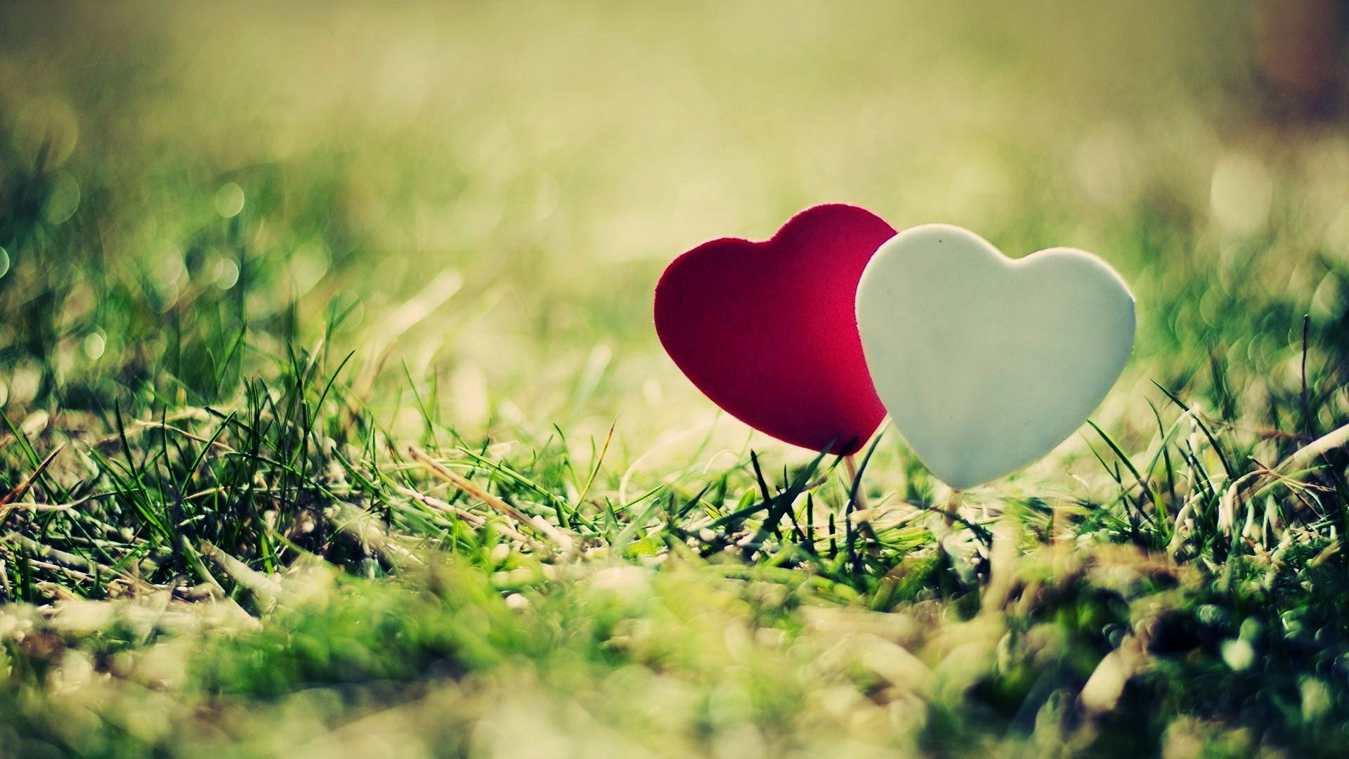 Love and Heart Wallpapers | Free Download HD Latest Beautiful Images