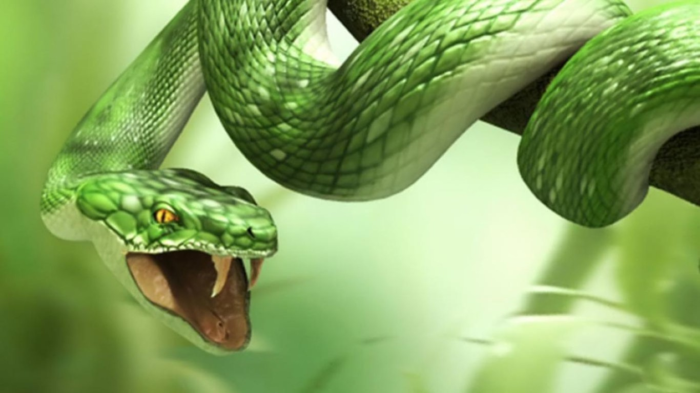 3D Snake HD for Laptop 1366x768 Wallpaper: Desktop HD Wallpaper