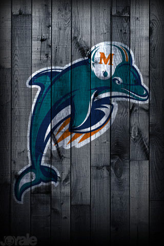 10 Images About Miami Dolphins On Pinterest