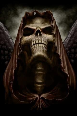 Halloween Skeleton Wallpaper.Free Skeleton Wallpaper Sf Wallpaper