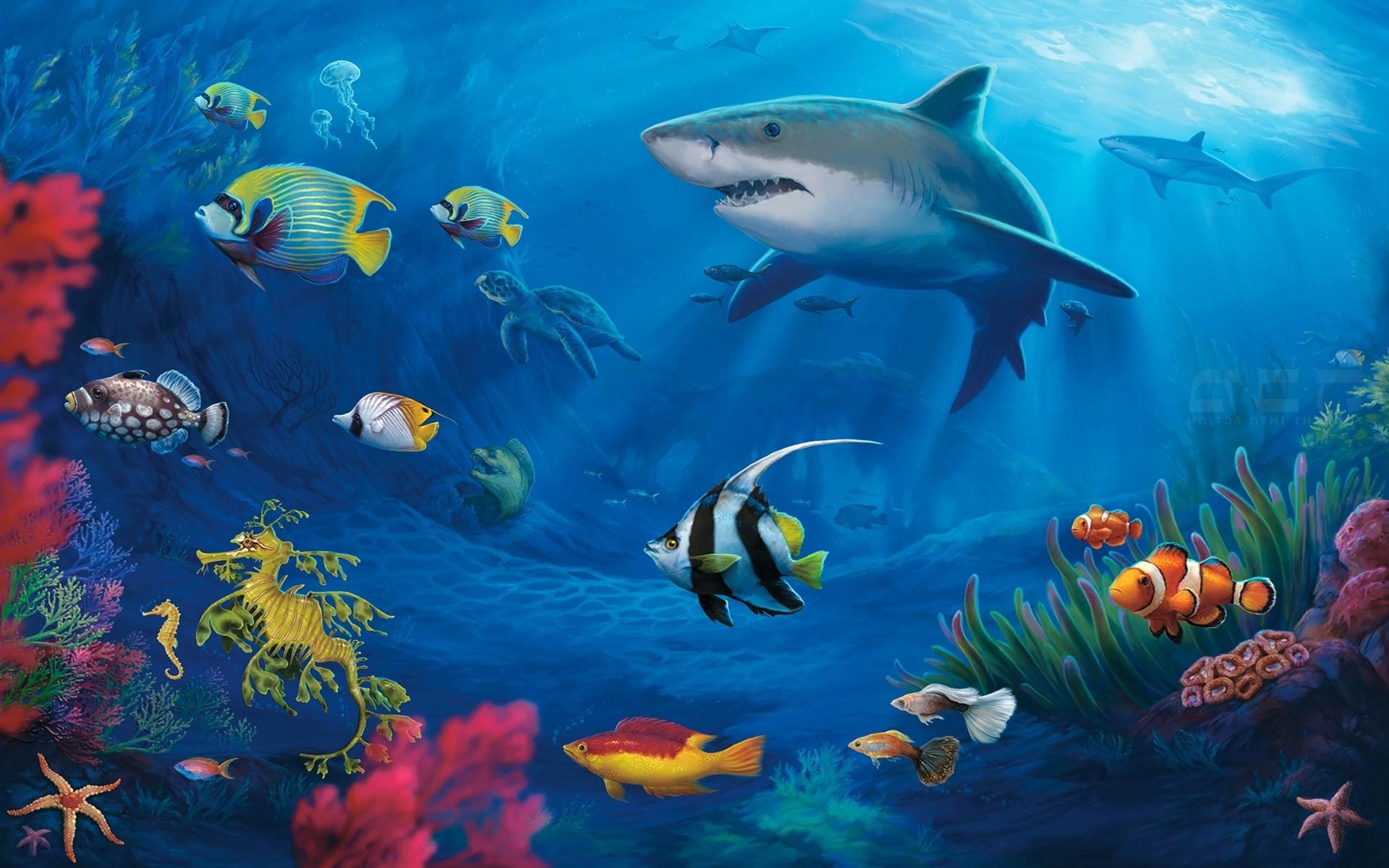 Download Wallpaper Macbook Tropical - free-tropical-fish-wallpaper-16  Image_432388.jpg