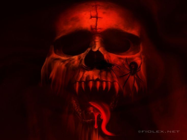 vampire wallpapers free | Wallpaper: Vampire Skull | Places to