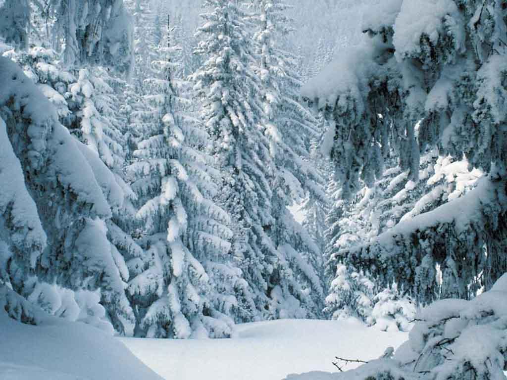 Free Desktop Wallpaper Winter Scenes - WallpaperSafari