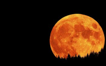 224 Moon HD Wallpapers | Backgrounds - Wallpaper Abyss
