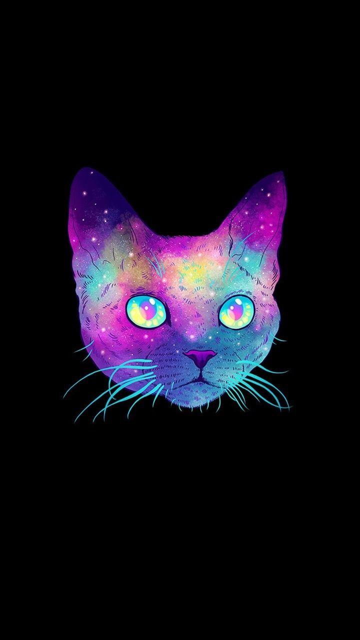 Galaxy Cat Wallpaper Sf Wallpaper