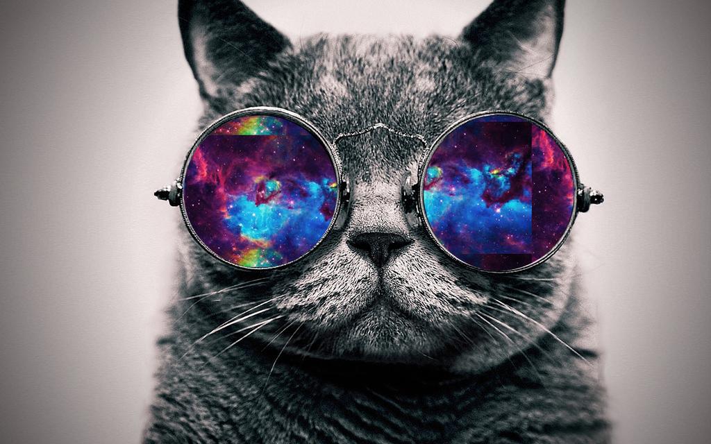 Galaxy cat wallpaper Group (50+)