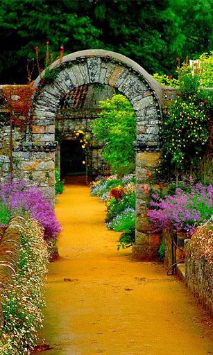 Garden Background Images Sf Wallpaper