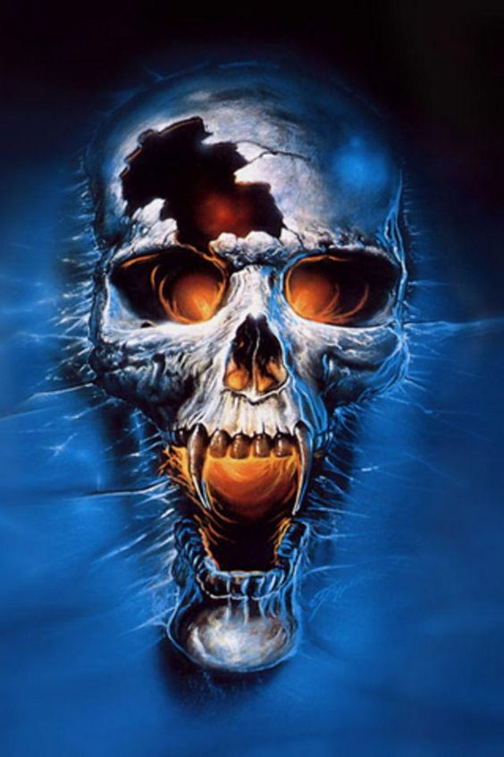 The gallery for --> Ghost Rider Skull Wallpaper | Camouflage and