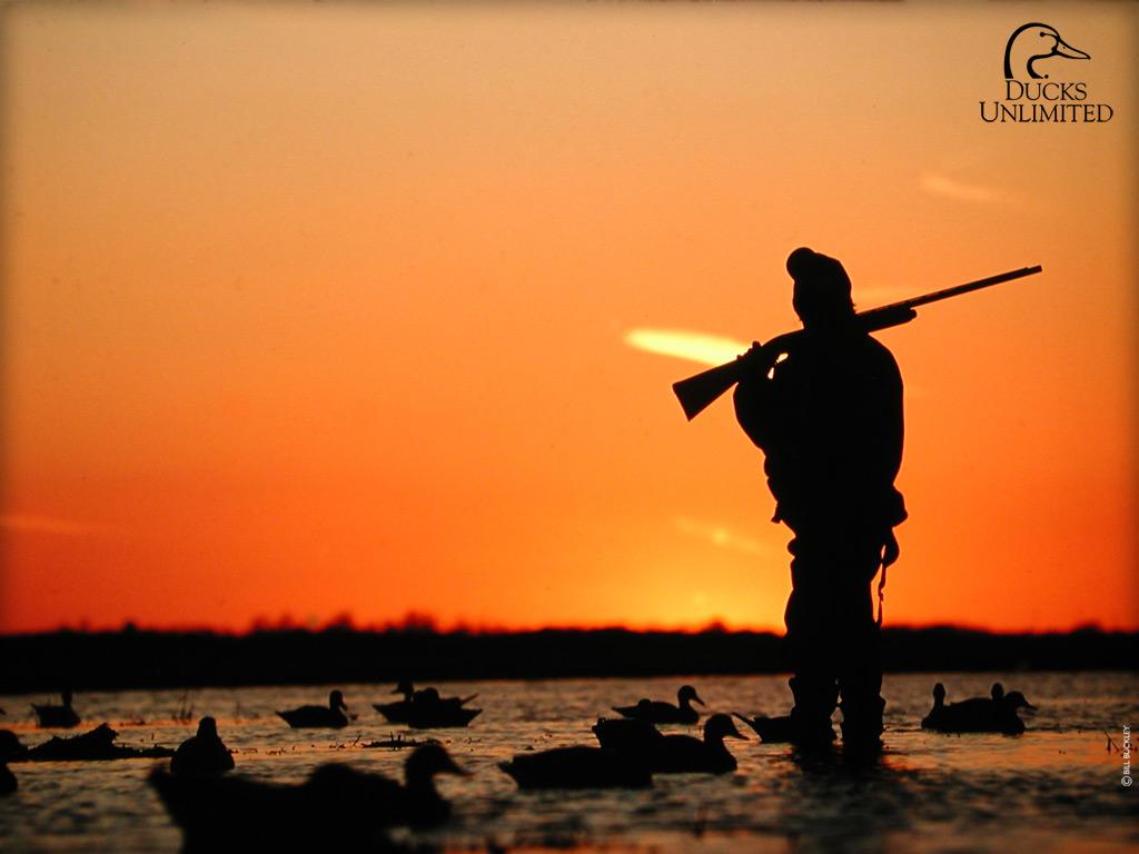 DU Hunting Wallpaper
