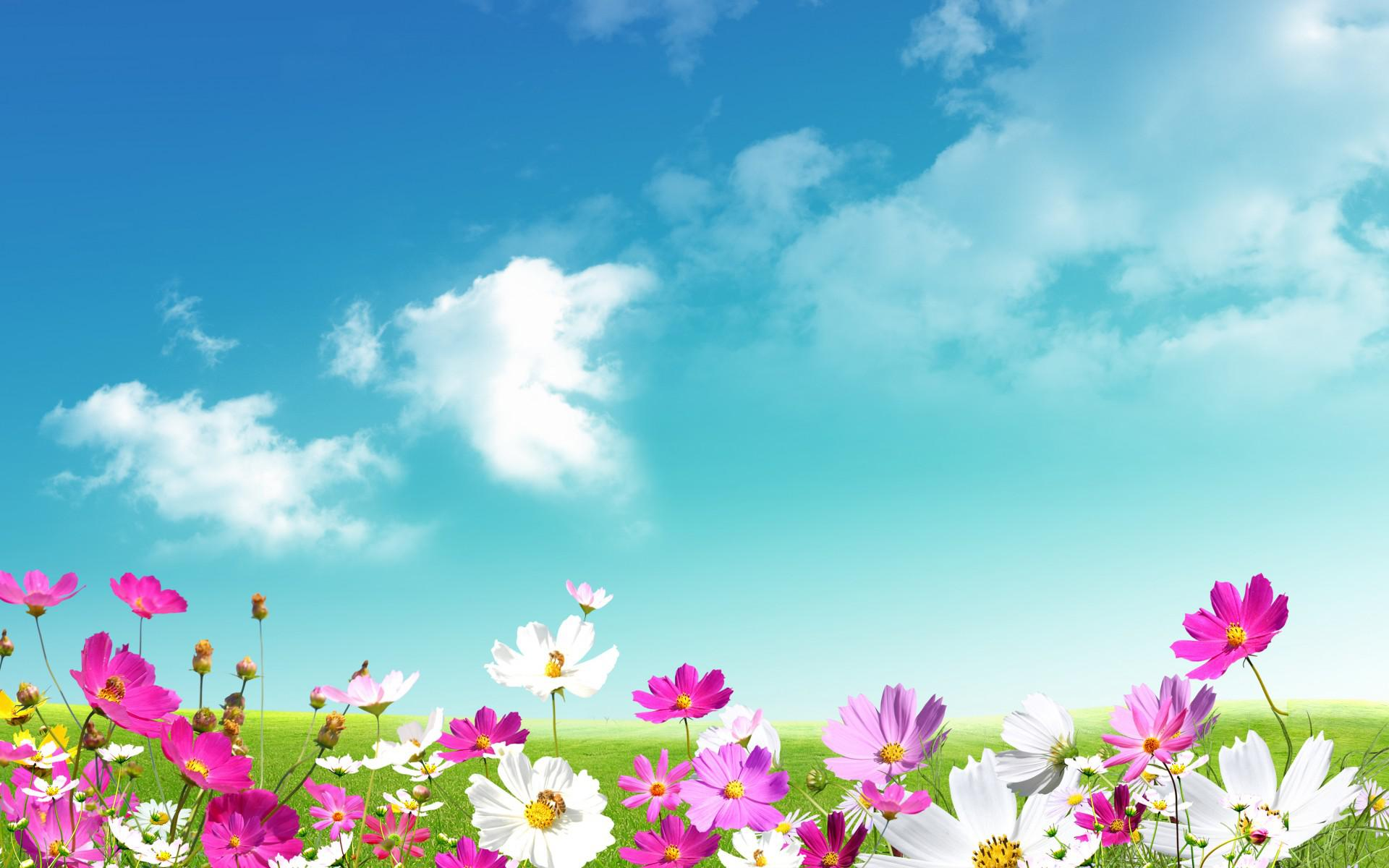 Grass Sky Wallpapers Group (77+)