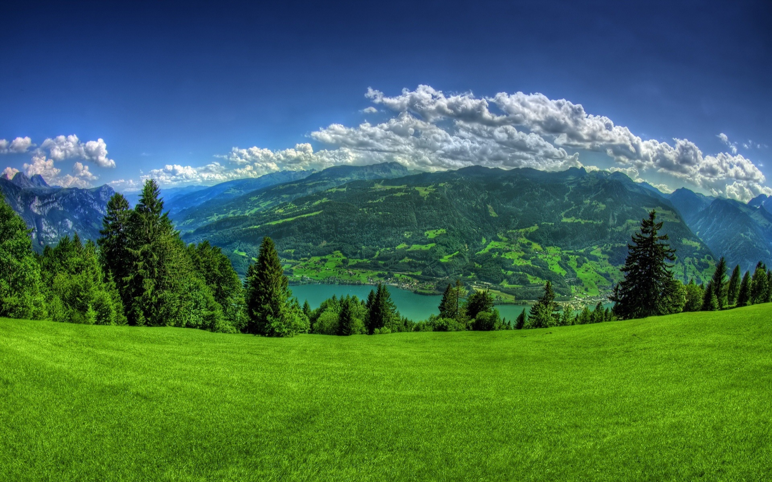 Grass And Sky Wallpapers Background - Excitelt com