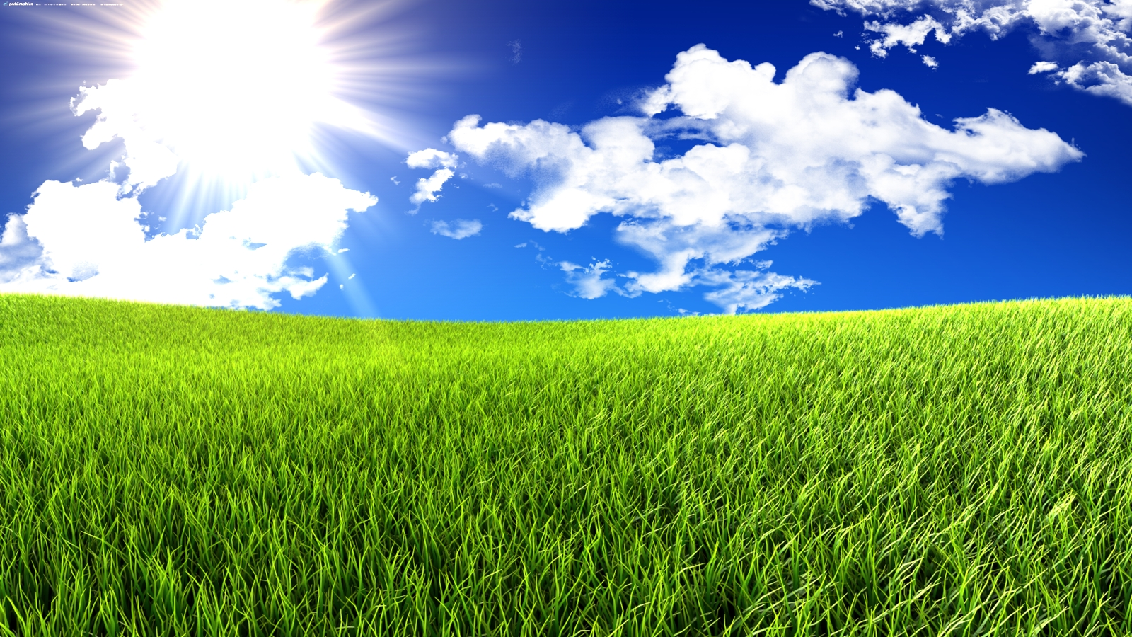 Keywords Grass And Sky Wallpaper and Tags